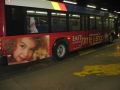 14_Vehilce_Wrap_Busses.jpg